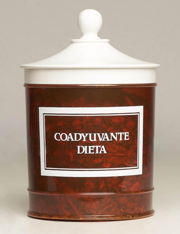 Coadyuvante Dieta (Dietphyton) Pl. Med. Dr. Pina